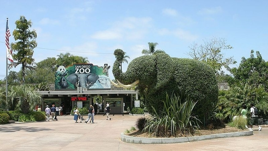 A sculpture of an elephant at the entrance of the San Diego Zoo in Calif.
