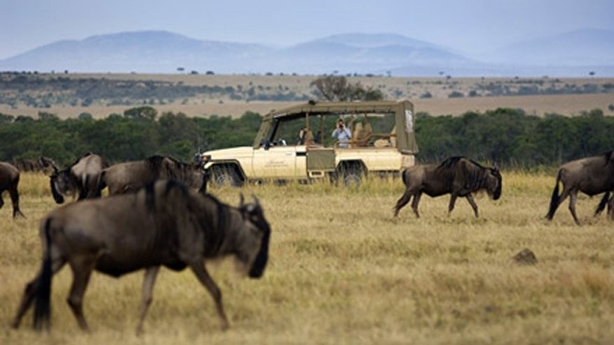 Adventurers flock to the Kilimanjaro region and see wildlife on the savannah.