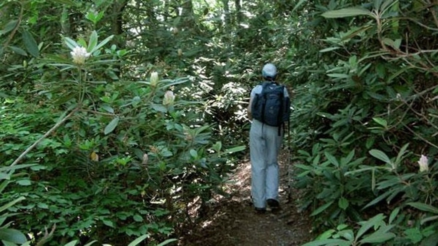 The Appalachian Trail near the tiny Blue Ridge Mountain town of Hot Springs, N.C.