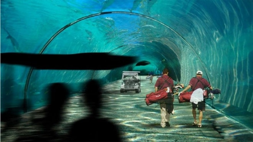 Visitors will be able to walk between islands in an underwater tunnel network.
