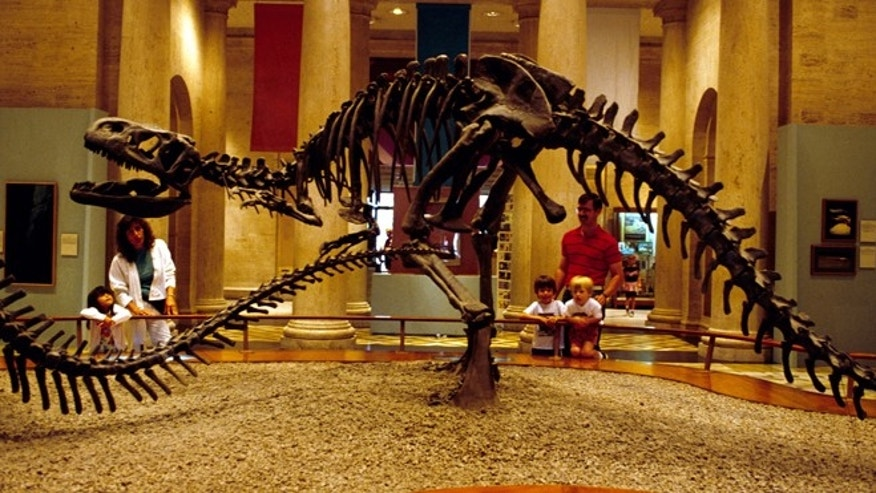 The Natural History Museum of Los Angeles County