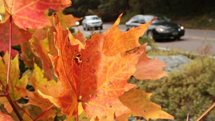 Sept. 16, 2011: Autos drive by colorful foliage in Smugglers Notch  in Stowe, Vt.