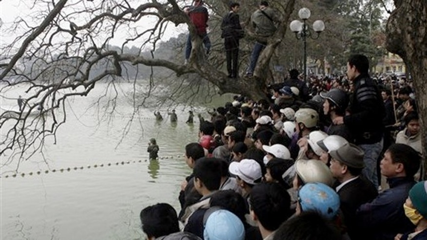 March 8, 2011:People around Hoan Kiem lake in downtown in Hanoi Capital, Vietnam to see a rare turtle that is sacred to the nation.