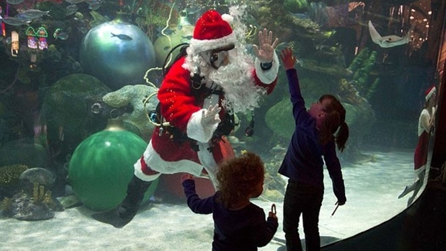 Dec. 9, 2012: Jerry Cowley, aquatic safety manager at the Silverton Hotel-Casino interacts with children as an underwater Santa Claus at the casino's aquarium in Las Vegas.