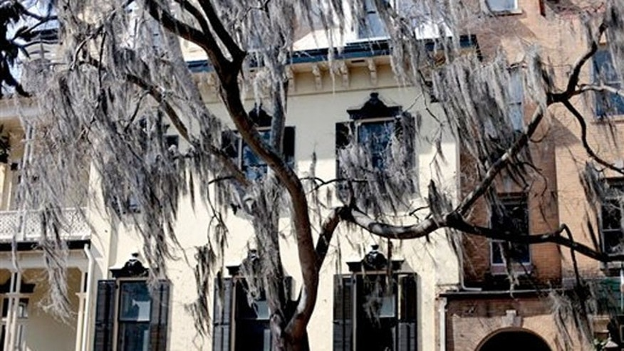 Feb. 21, 2011: Spanish Moss hangs from a tree along a street in the historic district of Savannah, Ga.