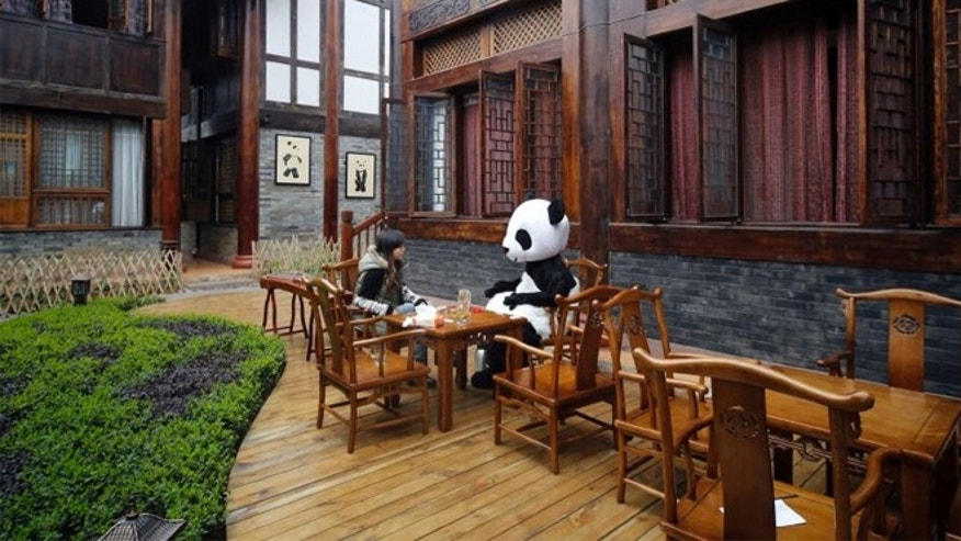 Even pandas need a break for tea once in awhile.