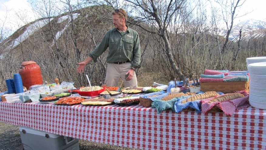 Our late afternoon lunch/dinner spread out on the park road on the way to Camp Denali.