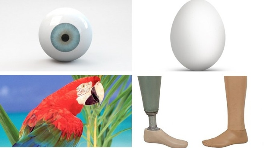 From a glass eye to a live parrot a survey releaves some of the bizarre items left behind on a flight.