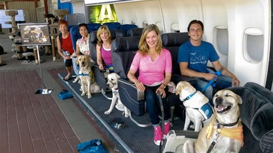 Aug 19, 2013: Megan Blake, Air Hollywood K9 Flight School Program Director (left, front row) with dog Super Smiley (far right), learning to fly.