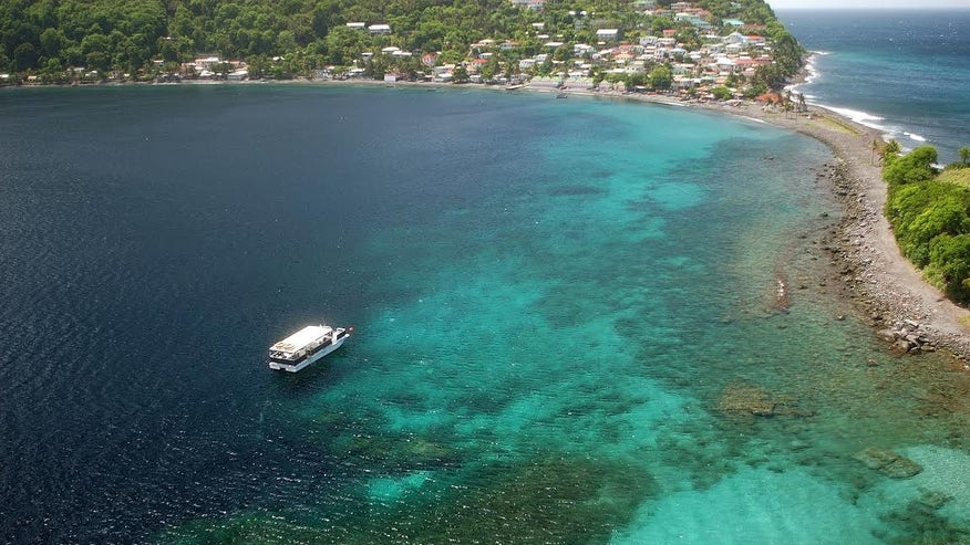 Dive the Depths of Dominica