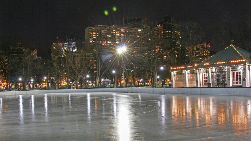 The Boston Common Frog Pond: Boston