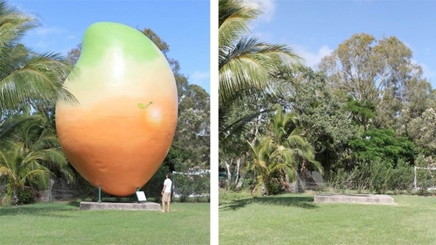 The Bowen tourist information center says its giant mango has been stolen, yet  local police say that they're not investigating.