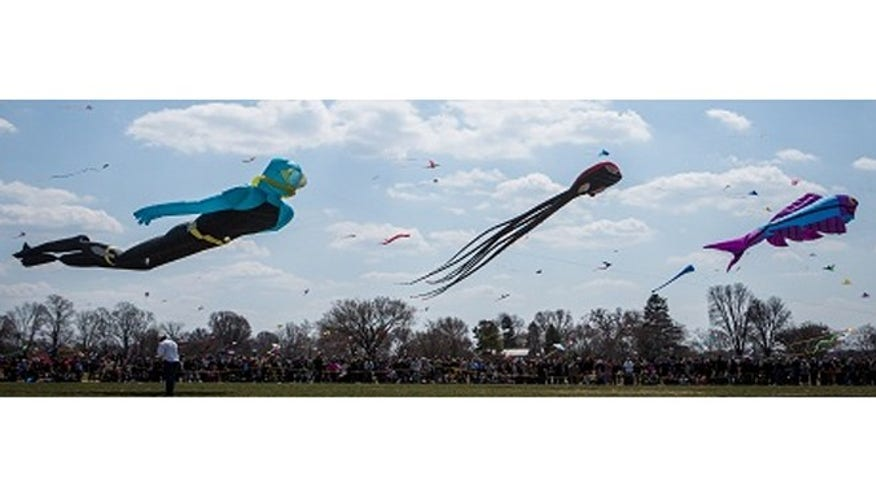 Fly a kite at the Blossom Kite Festival