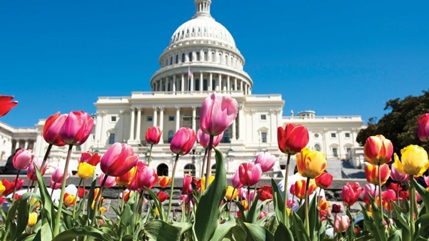 DC deals for weary travelers