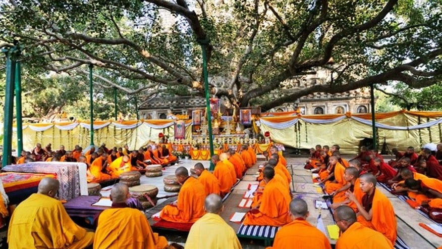 Mahabodhi Tree, Bodh Gaya, India