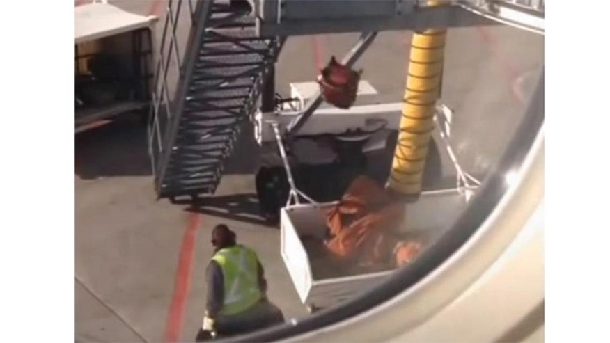Air Canada said it has fired baggage handlers at Pearson International in Toronto for tossing carry-on luggage from the top of the jetway.