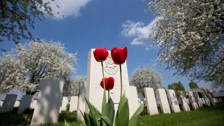 Tulips bloom in front of the grave of a Commonwealth soldier at the World War I Kandahar Farm Cemetery in Wulvergem, Belgium.