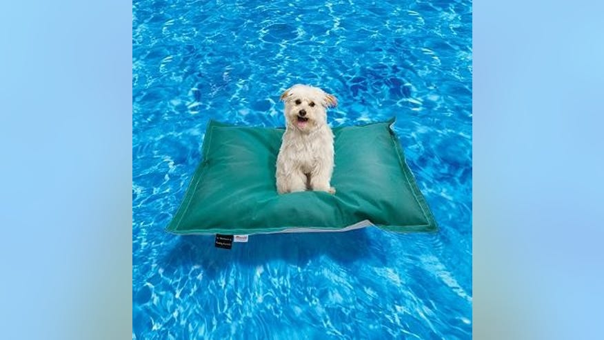 Pet Kai Float
