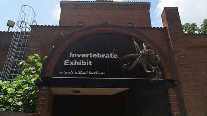 Smithsonian's National Zoo will close Invertebrate Exhibit.