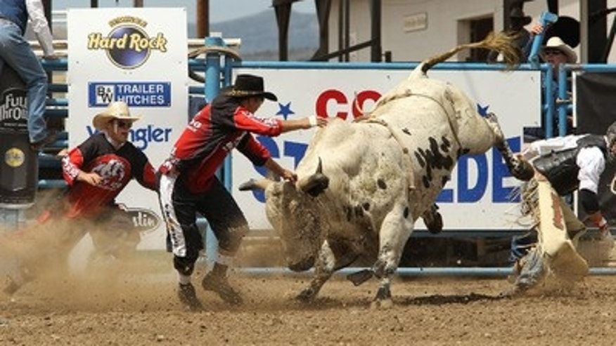 The Cody Stampede.