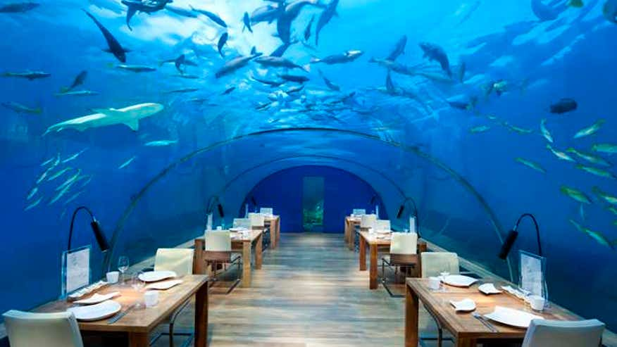 Under the sea: Ithaa Undersea Restaurant Rangali Island, Maldives