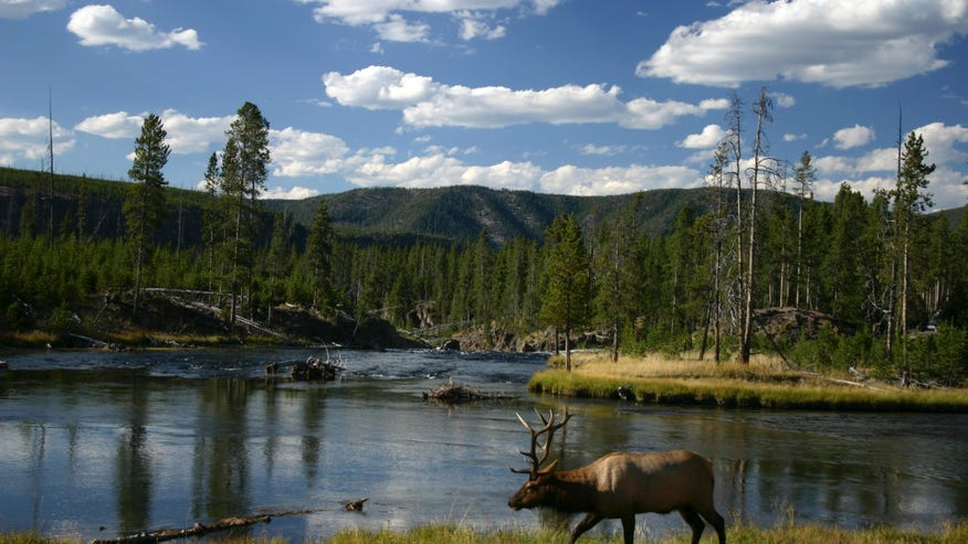 Yellowstone National Park: Idaho, Montana, and Wyoming