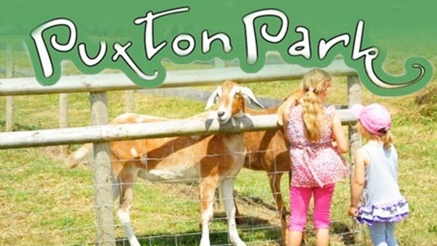 Puxton Park refused entry of a man traveling without children who came to see the falcons.