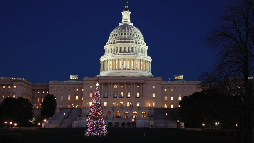 National Christmas Tree, Washington D.C.