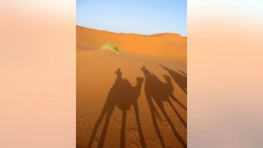 This June 2013 photo shows a desert sun casting a shadow of a three-camel caravan on the sand dunes of Erg Chebbi, Morocco, at the edge of the Saharan desert. The route from Marrakech, Morocco, to the Saharan desert follows one of Africa's most mythic and historic trading routes: the road to Timbuktu, lined with centuries-old castles, oases and the occasional camel-crossing road warning. (AP Photo/Giovanna Dell'Orto)