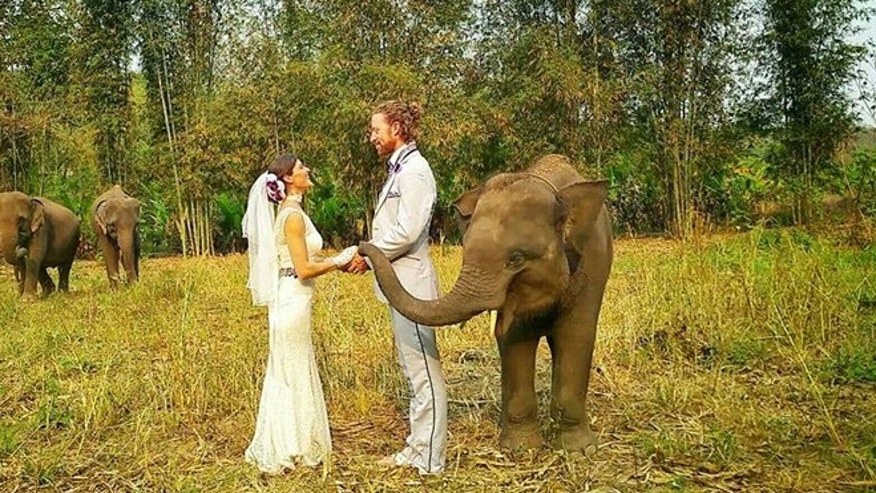 Tying the knot at an elephant rescue center.