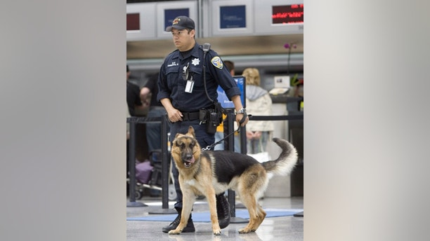 SAN FRANCISCO, CA - JULY 3 :  San Francisco police officer Carlos Cordova and his dog Fax patrol the ticketing area of the International Terminal at the San Francisco International Airport on July 3, 2007 in San Francisco, California. The U.S. reportedly increased the number of air marshals on overseas flights, and the Airports use additional patrol units as the nation gets ready for the Fourth of July holiday.  (Photo by David Paul Morris/Getty Images)