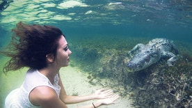 Too close for comfort? Roberta Mancino holds out her hands to an American crocodile.