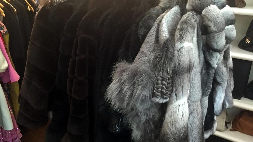 In this Feb. 23, 2016 photo shows a rack of fur coats on display at the Fashionista consignment store in Palm Beach, Fla. The store specializes in high-end women's vintage clothing, shoes, purses and accessories. (AP Photo/Kelly Kennedy)