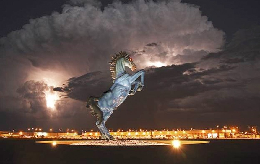 Denver International Airport Horse