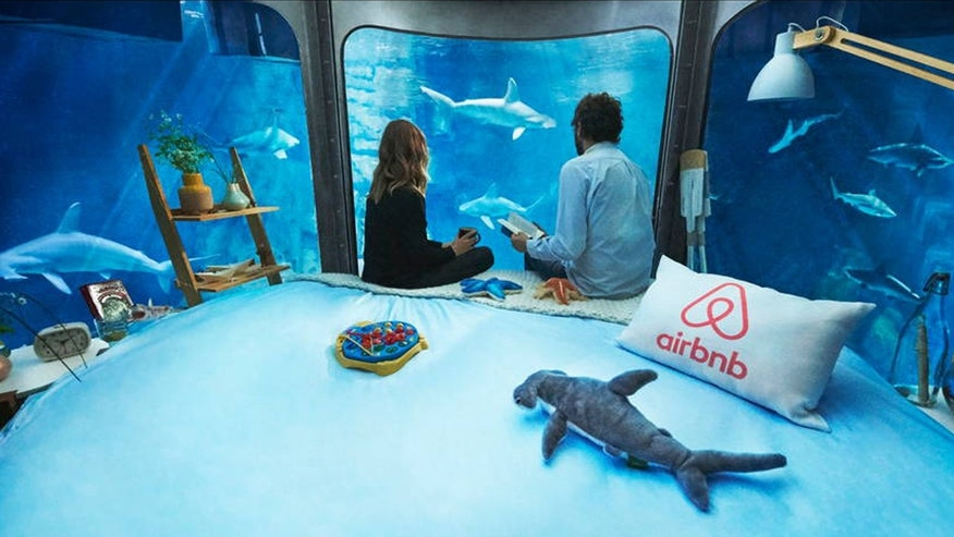 Spend a night in the shark tank at the Paris Aquarium.