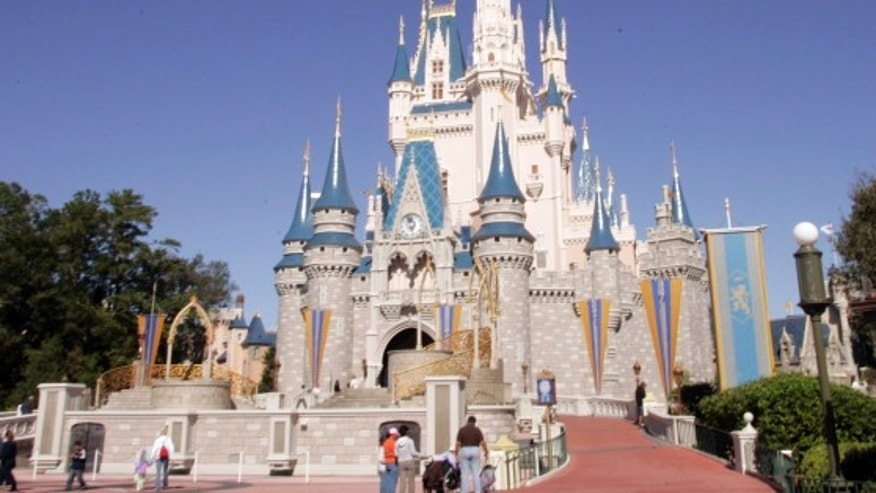 Walt Disney World's Magic Kingdom saw over 20 million visitors in 2015-- the most of any theme park in the world.
