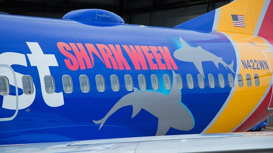 Sharks on a plane? Southwest Airlines is teaming up with the Discovery Channel to celebrate Shark Week.
