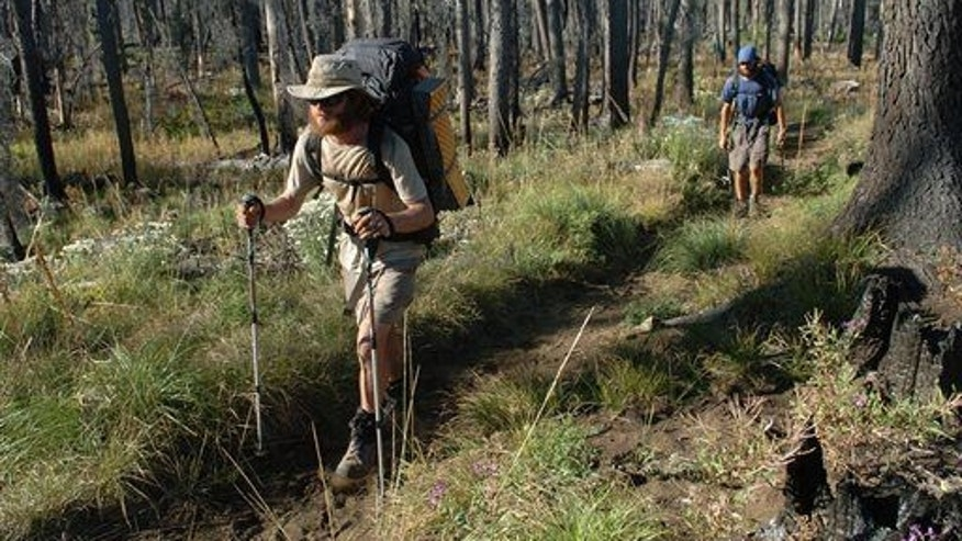 Andrew Schurr leads Cal Seabaugh up the Pacific Crest Trail near Santiam Pass, Ore., in the Oregon Cascades.