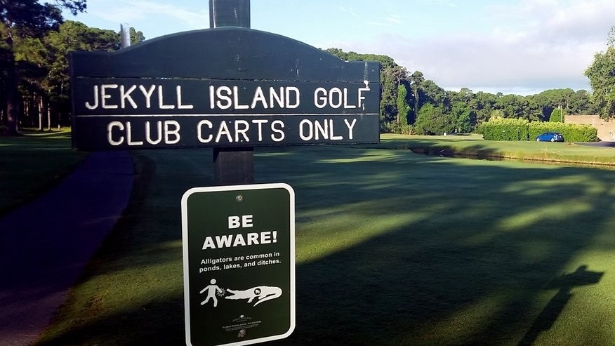 "A sign warns golfers to ""Be Aware"" of alligators on Jekyll Island, Georgia. The state park recently placed roughly 30 signs at golf course entrances, ponds and ditches to make sure visitors know the island is home to an abundance of alligator populations."