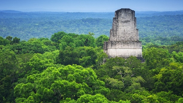 View of one of the various temples on the archeological site of Tikal and the jungle from  a top of a of the structures allowed to the public to climb.