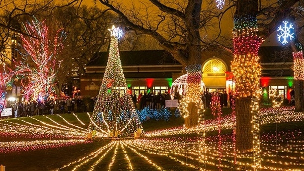 12/20/15 8:43:30 PM -- Chicago, IL, USALincoln Park Zoo Lights© Todd Rosenberg Photography 2015