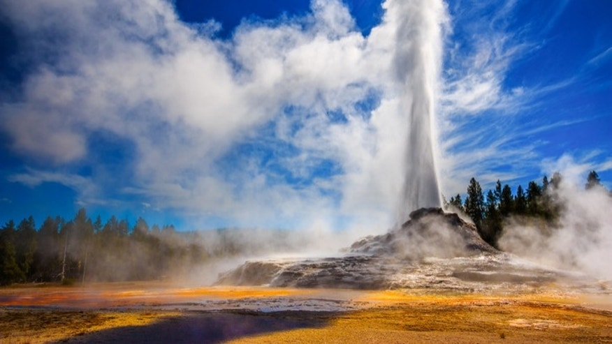 Over 4 million people came to visit Yellowstone National Park last year.