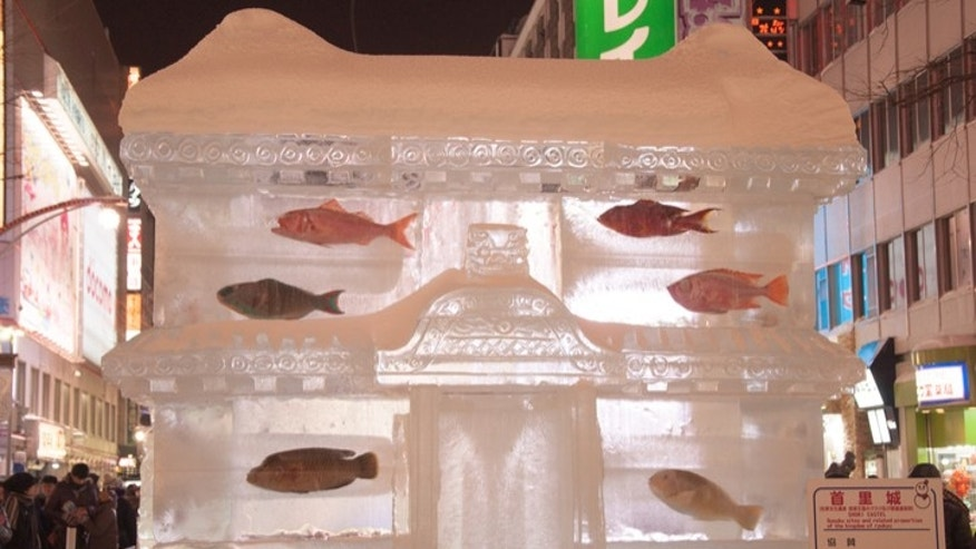 Are dead frozen fish works of art?