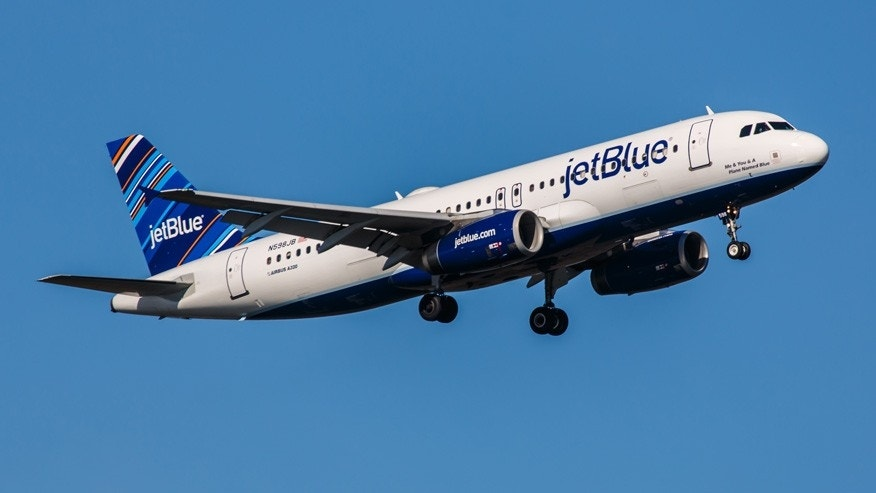 JetBlue flight headed for New York City was forced to circle back because of birds.