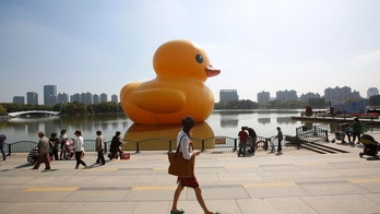 rubber duck reuters