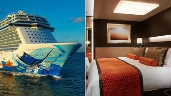 norwegian cruise line escape stateroom NCL