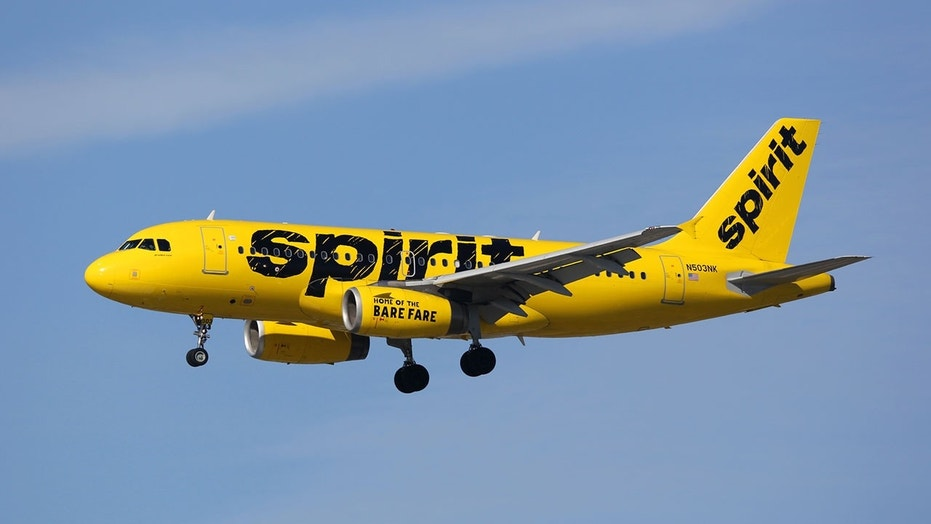 Passengers on board a Spirit Airlines flight to Orlando rushed to help save a man who collapsed on the plane before the flight.