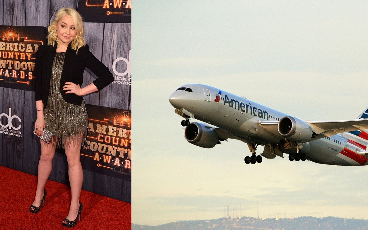 Country music singer RaeLynn claims American Airlines flight attendant harassed her over diabetes service dog