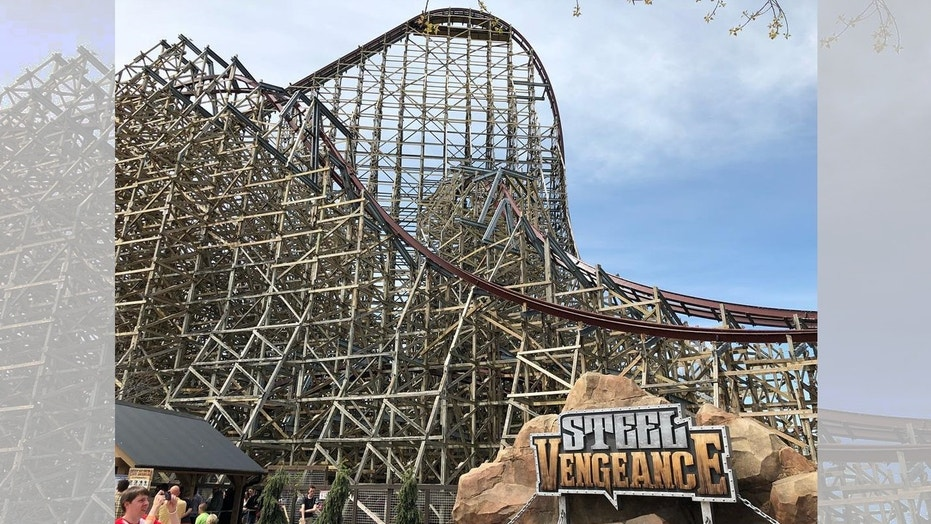 The Steel Vengeance roller coaster at Cedar Point shut down after two cars collided.