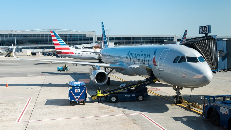 """The American Airlines flight, not pictured, elected to return to O'Hare after a """"possible odor"""" was detected in the cabin."""